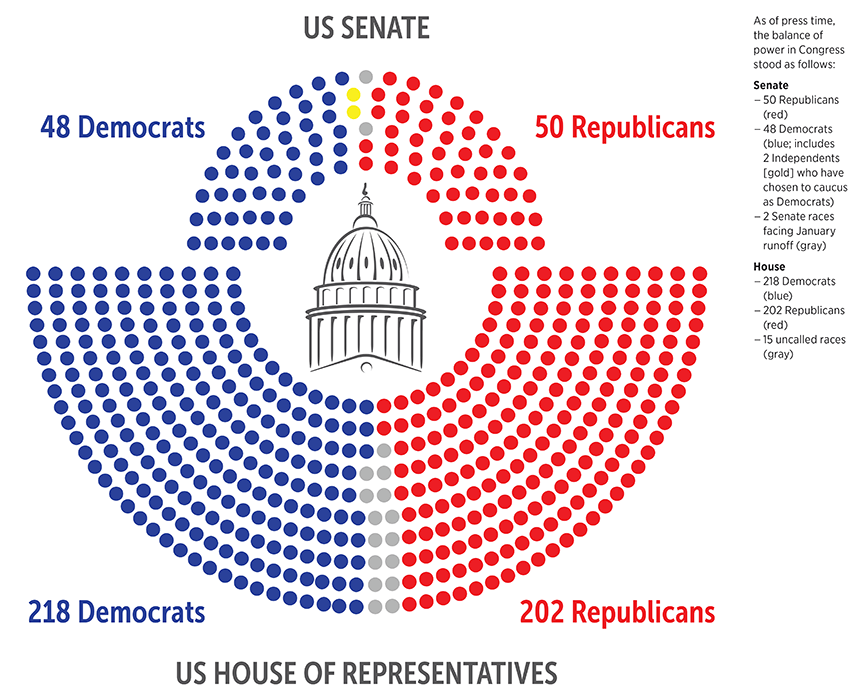 The Post-Election Landscape