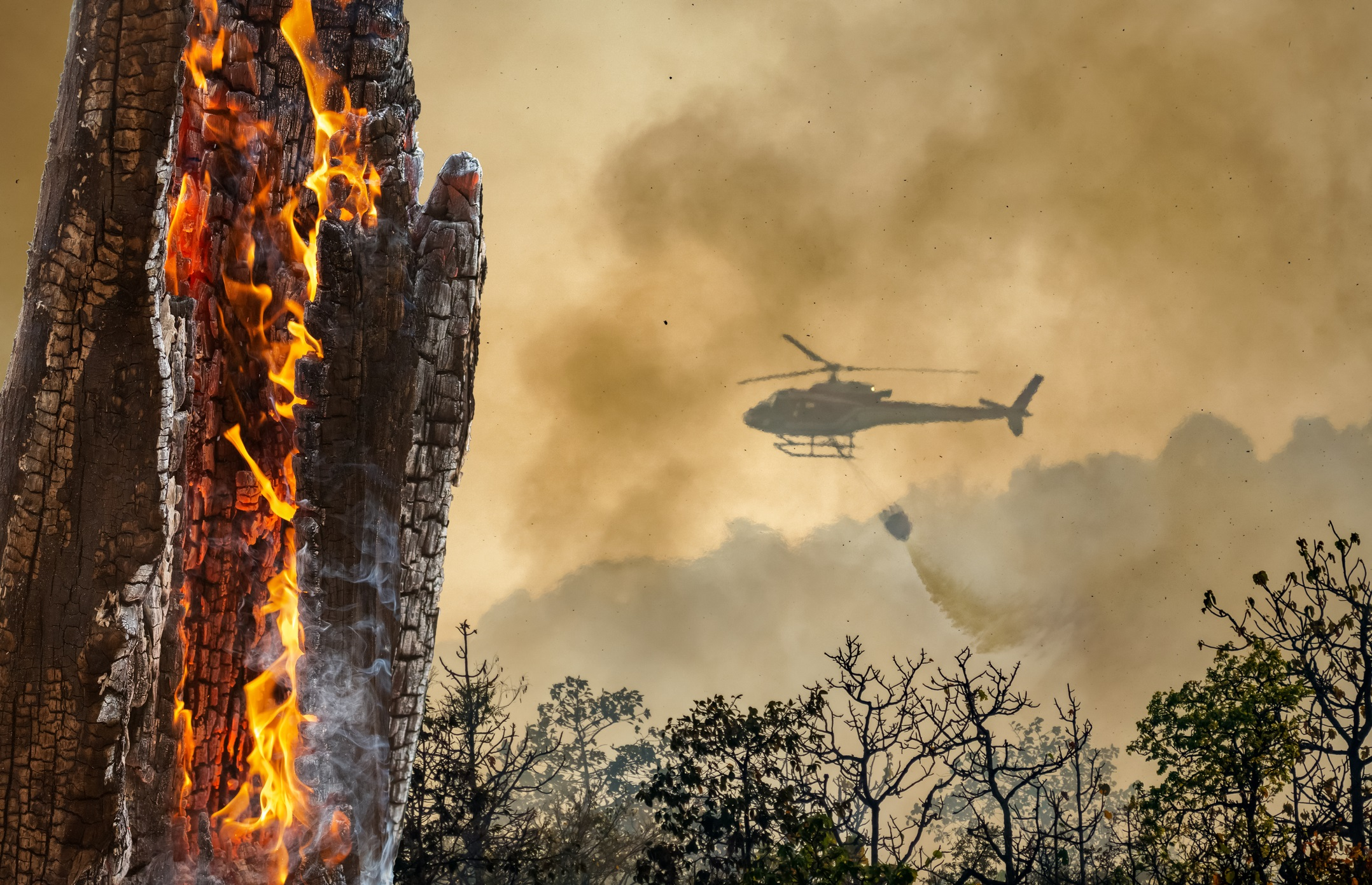 2021 HAI Aerial Firefighting Safety Conference Only a Month Away